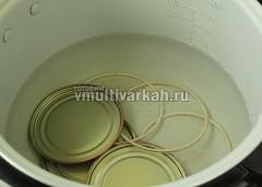 В чашу влейте полтора литра воды, поместите крышки и резинки