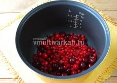 Промытые и перебранные ягоды выложите в чашу