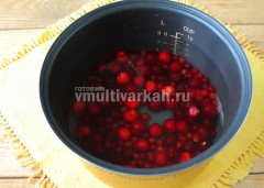 Влейте 3 литра воды, варите 40 минут в режиме Суп или Тушение
