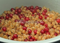 Дайте воде стечь и отправьте ягоды в чашу мультиварки