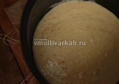 Тесто выложите в смазанную маслом чашу и выпекайте 40 минут в режиме выпечка