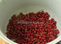 Красную смородину промойте, выложите в чашу, добавьте воду и варите 5 минут на мультиповаре при 140 градусах