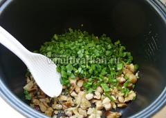 Выключите мультиварку, приправьте грибы солью и специями, добавьте зеленый лук, перемешайте