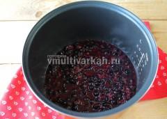 Выложите в чашу, добавьте воду, готовьте в режиме тушение 10 минут